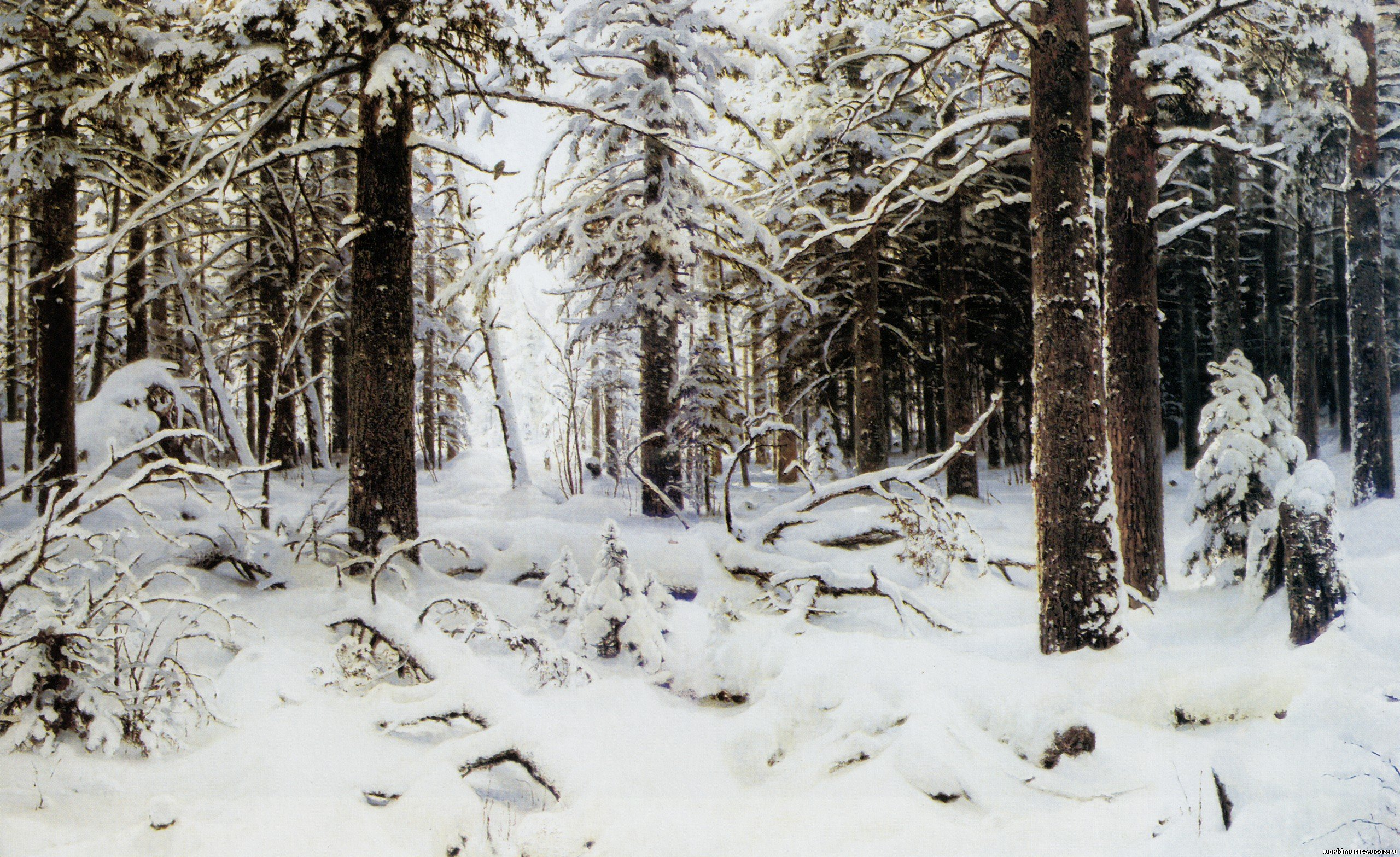 Дубы вДубовая роща. Сосновый бор. Мачтовый лес Вятской губернии